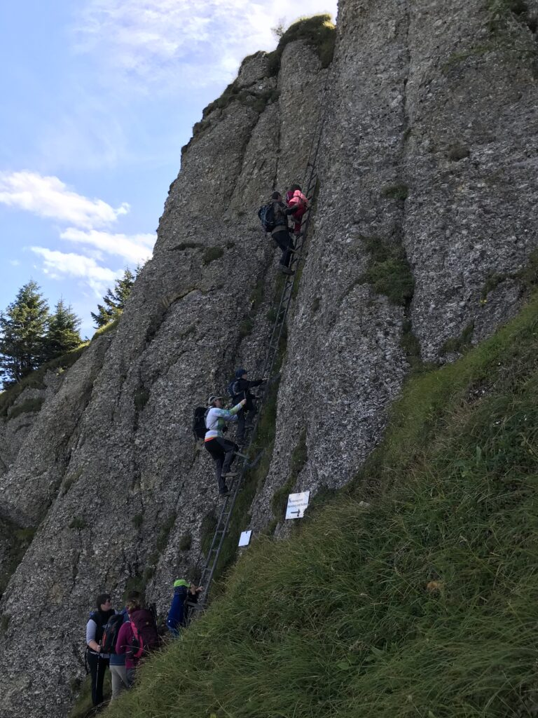Bergwander 2020
