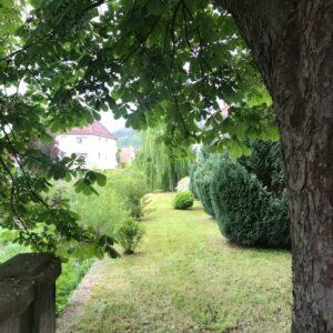 Auch die Ansicht des Bürgerspitals von der Flussseite, die das Kronacher Stadtbild prägt, wurde gepflegt und zeigt sich nun wieder von ihrer besten Seite.